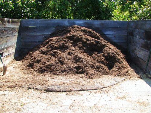 decontaminarea gunoiului de grajd)